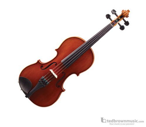 4/4 Eastman VL2GST Outfit Galiano Violin