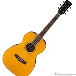 Ibanez PN15AT Parlor Style PF Series Acoustic Guitar