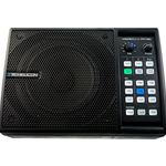 Powered Speaker With Effect TC VoiceLive FX150