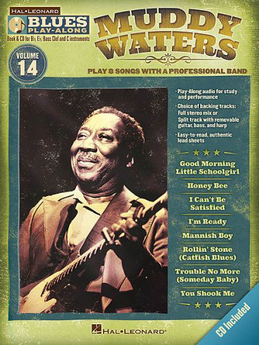 Muddy Waters Blues Guitar Playalong