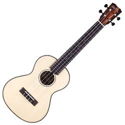 Spruce Top Striped Ebony back and sides, Tenor